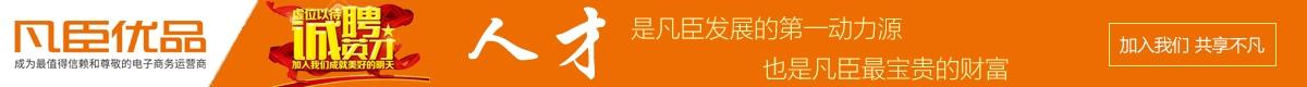 芜湖凡臣电子商务有限责任公司招聘